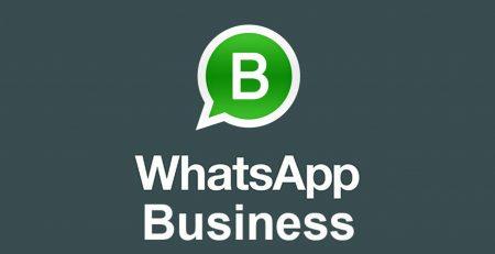 whatsapp-business-aziende